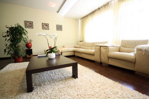 Luxury Apartment for rent in the city center