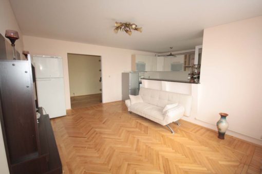 Spacious flat for rent near the center