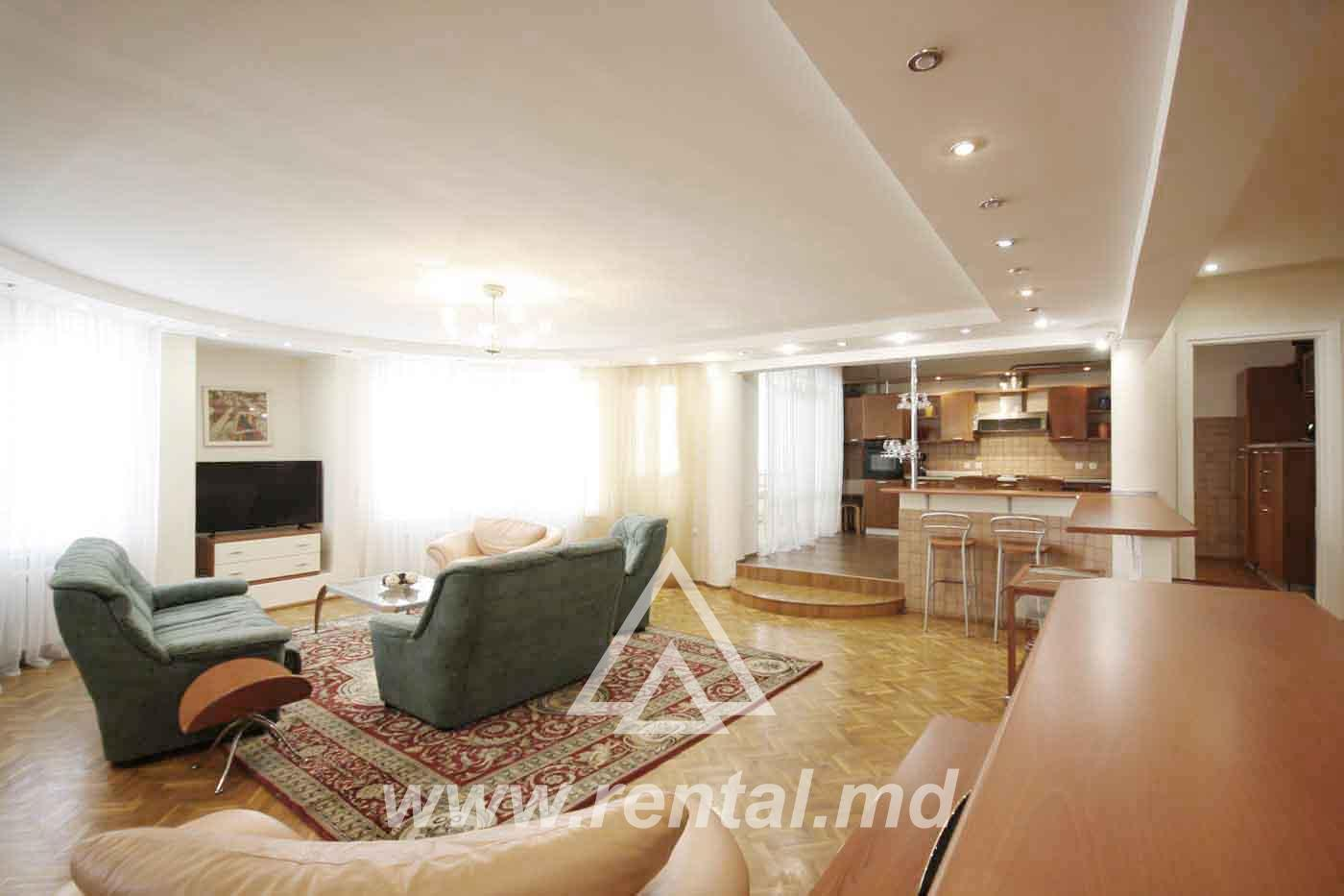 Spacious rental apartment in the city center