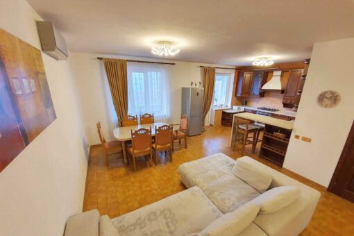 Spacious apartment for rent in the city center