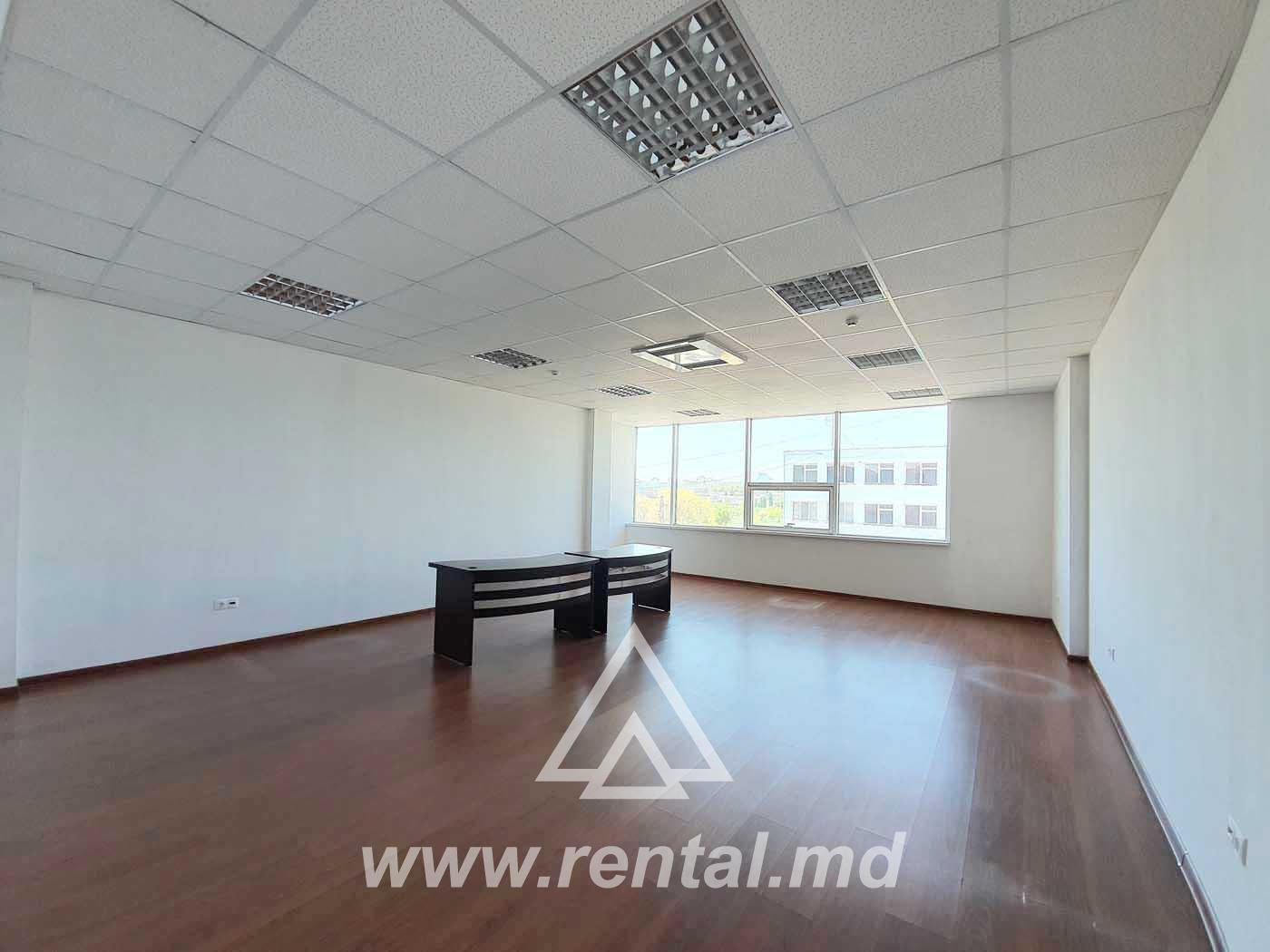 Offices for rent in Petricani area